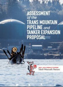 twn-assessment-summary