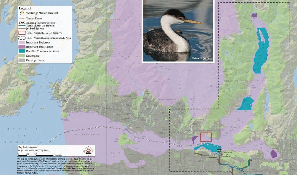 Map: Major salmon bearing rivers and streams